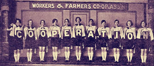 Worker Cooperatives in the United States: A Historical Perspective and Contemporary Assessment